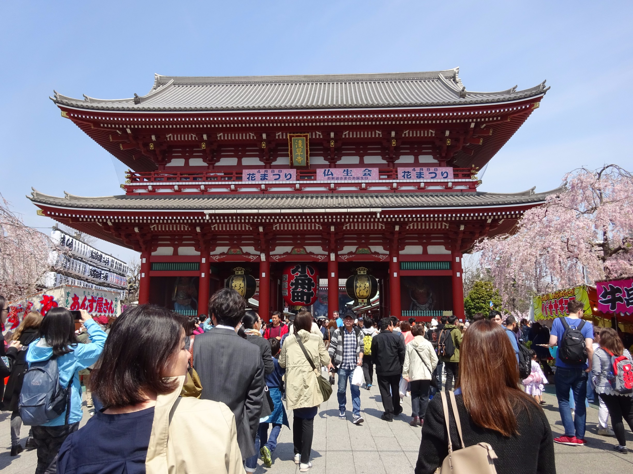 [PM] Half Day : Asakusa Walking Tour with Japanese Cooking Experience